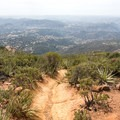 View to the southwest from the summit.- Viejas Mountain