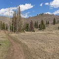 A large meadow on the far eastern end of the trail. - Tibble Fork Loop