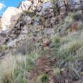 The trail is quite steep at times.- Climbers Loop Trail