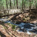 The first bridge at the start of the loop.- Chesterfield Gorge Natural Area