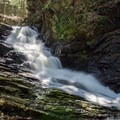 Waterfall in Chesterfield Gorge.- Chesterfield Gorge Natural Area