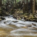 Wilde Brook.- Chesterfield Gorge Natural Area