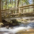 Second bridge along the loop trail.- Chesterfield Gorge Natural Area