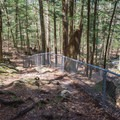 Parts of the trail have rocks and roots, so sturdy footwear is recommended.- Chesterfield Gorge Natural Area
