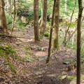 Purgatory Brook Trail.- Purgatory Falls