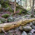 Resting rocks at Upper Purgatory Falls.- Purgatory Falls