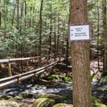 Trail junction at the north end of the Purgatory Brook Trail. - Purgatory Falls