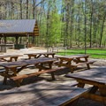 The picnic area at the science center has covered and uncovered picnic tables. - Squam Lakes Natural Science Center