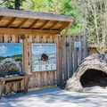 One of many educational exhibits along the Live Animal Trail.- Squam Lakes Natural Science Center