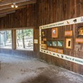 Along the Live Animal Trail.- Squam Lakes Natural Science Center