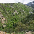 Views up Big Willow Canyon to start.- The Sawmill Trail