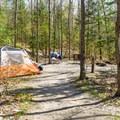Typical walk-in site.- Hancock Campground