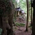 The start of the Nakahetchi route of the Kumano Kodo with the first Oji shrine. - The Kumano Kodo: Nakahechi Route