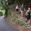 A section of trail that meets the road. Most days you will cross plenty of small rural roadways. Be careful because the cars can sneak up on you. - The Kumano Kodo: Nakahechi Route