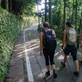 Roadway trail. Make sure to keep your eyes out for the little brown trail markers because it can be easy to miss your turn off.- The Kumano Kodo: Nakahechi Route