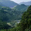 Looking down the valley to the classic highland terrain through which the Kumano Kodo leads. - The Kumano Kodo: Nakahechi Route
