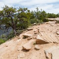 LPS is mostly technical, rocky trail.- Porcupine Rim