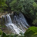 When you see the lower waterfall about a mile into the trail, the trail junction is not far ahead. It is easy to miss, and it doesn't look very tracked out.- Ho'opi'i Falls Trail