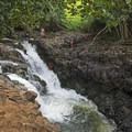 The jump is around 20 feet high, and the pool is about 10 feet deep. - Ho'opi'i Falls Trail