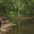Walking back from the upper falls. This is a short but gorgeous hike.- Ho'opi'i Falls Trail