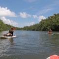 Wailua River paddle.- Wailua River Paddle