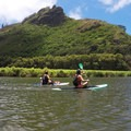 Beautiful scenery along the river. All the kayaks have to turn around near here, but SUPs are allowed.- Wailua River Paddle