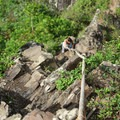 The rock walls of the third peak require climbing with ropes.- Olomana Three Peaks Hike