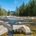 The East Branch of the Pemigewasset River along the Lincoln Woods Trail. - Franconia Falls