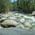 Looking downstream from the falls. - Franconia Falls