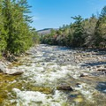 View of the East Branch of the Pemigewasset River. - Lincoln Woods Trail