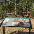 Interpretive signage can be found along the trail with information about the area's history. - Lincoln Woods Trail