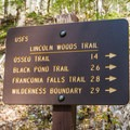 The Lincoln Woods Trail runs to the Pemigewasset Wilderness boundary. - Lincoln Woods Trail