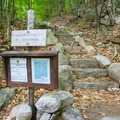 Junction for Champney Falls. The stairs lead toward the summit. - Mount Chocorua via Champney Brook Trail