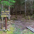 The Moose Alley Trail is a good place to look for moose when the trail is open. - Moose Alley