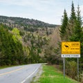 One of many reminders that you're in moose country.- Moose Alley