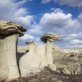 Formed by water and wind.- Bisti Badlands North of Bisti Wash
