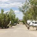 Coronado Campground road.- Coronado Campground