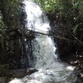 A small nearby waterfall.- Fern Grotto