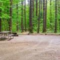 Typical campsite.- Covered Bridge Campground