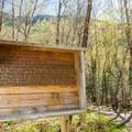 Trailhead sign. - Crawford Notch State Park