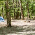 Typical campsite at Dry River Campground.- Crawford Notch State Park