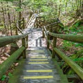 Steps leading into the gorge.- Lost River Gorge + Boulder Caves