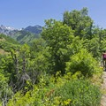 Riding in Little Cottonwood Canyon.- Quail Hollow Mountain Biking