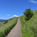One of the switchbacks leading up to the M.- Missoula's M Trail