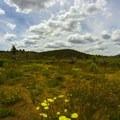 Near the trailhead.- Domeland Wilderness via Pacific Crest Trail