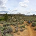 Hiking the Pacific Crest Trail into Domeland Wilderness.- Domeland Wilderness via Pacific Crest Trail