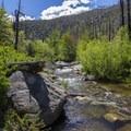 Ninemile Creek needs to be forded here before Soda Flats.- Jordan Hot Springs via Blackrock Trailhead