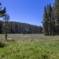 Small unnamed meadow near the trailhead.- Jordan Hot Springs via Blackrock Trailhead
