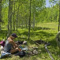 The upper meadow is a great place for a picnic. - Pine Hollow Loop