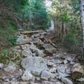 Ammonoosuc Ravine Trail.- Lakes of the Clouds Hut + Mount Washington